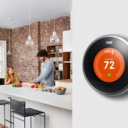The Nest Can Be Placed In Your Kitchen