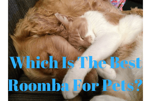 What Is The Best Roomba For Pet Owners?